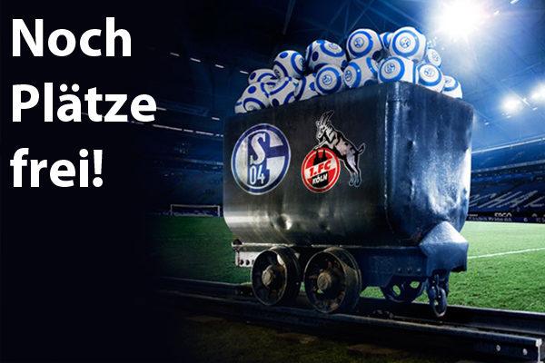 Tickets Schalke 04 gegen 1. FC Köln